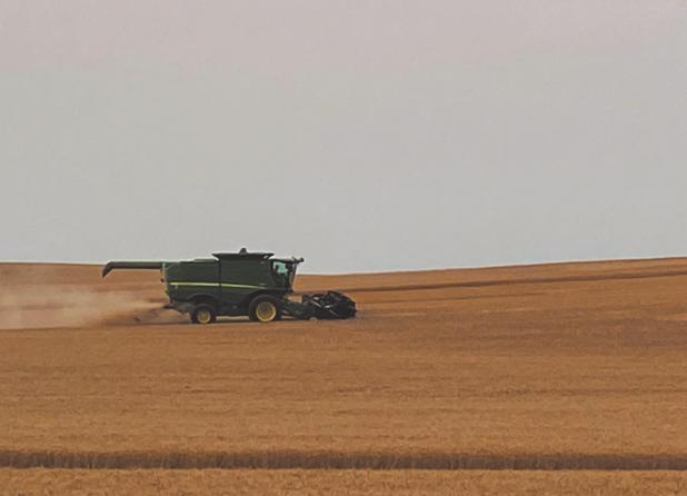 Grant County early harvest nearly complete